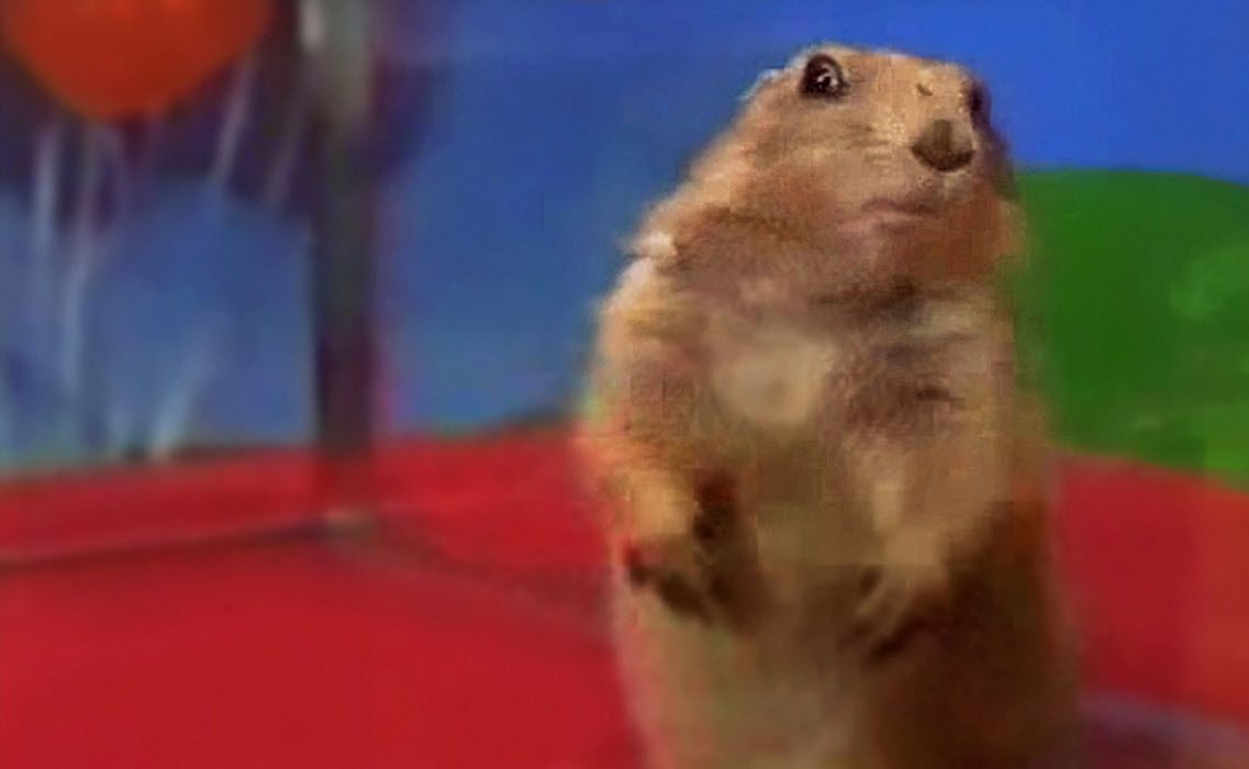 A screen capture of the viral meme Dramatic Chipmunk looking very...dramatic.