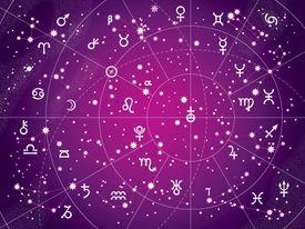Xii Constellations of Zodiac (Antique Purple Version)