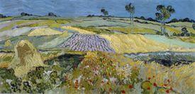 Wheatfields Near Auvers, by Vincent van Gogh
