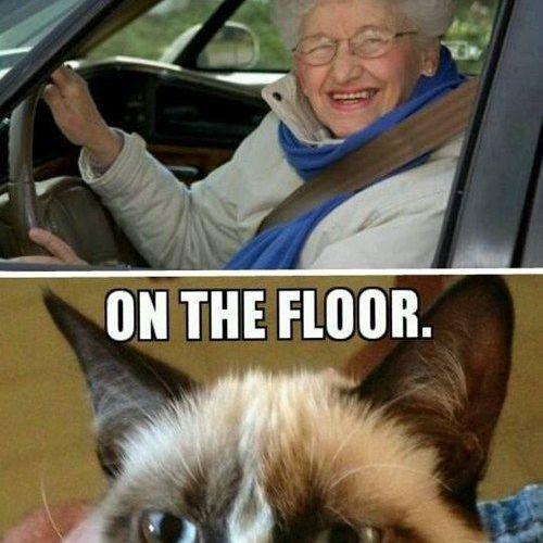 Grumpy Cat Answers Mrs Fletcher