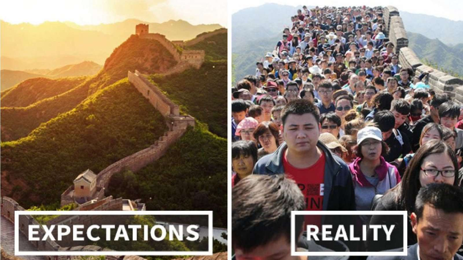 20 Perfect Expectations vs  Reality Memes