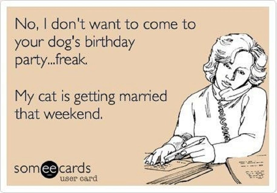 Woman with pink background and text: No, I don't want to come to your dog's birthday party...freak. My cat is getting married that weekend.