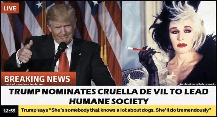 Cruella DeVil - trump meme