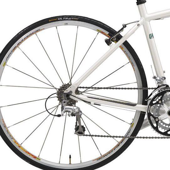 Rear bike gears