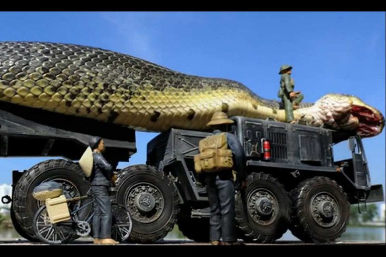 Giant snake on a truck