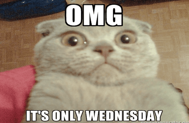 OMG its only weds - meme