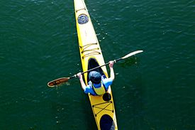 Directly Above View Of Man Canoeing In Canal