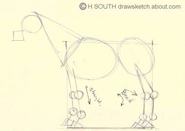 How to Draw a Horse in Simple Steps