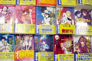Manga comic books.