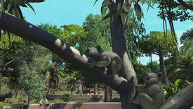 Koala bears in Zoo Tycoon