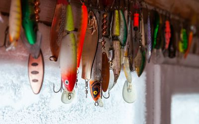 8 Reasons Why You're Not Catching Fish