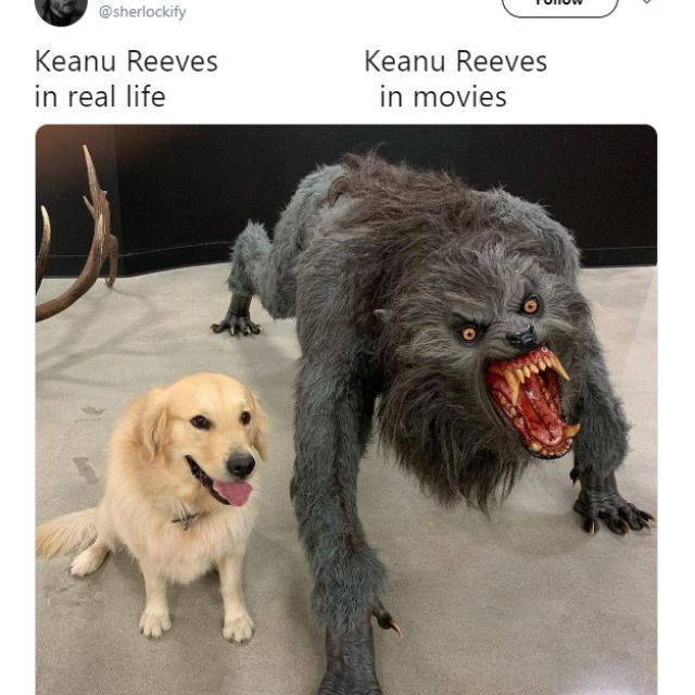 Keanu Reeves meme with sweet dog and mean dog