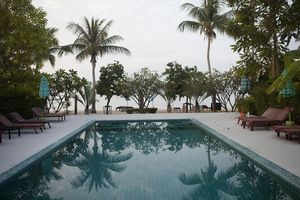 Beautiful swimming pool reflects palm trees