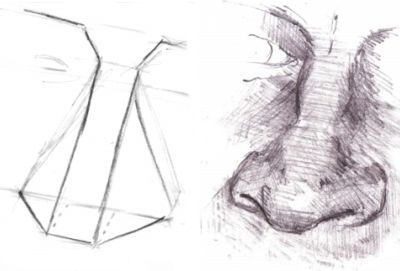 Drawing Simplified Nose Structure