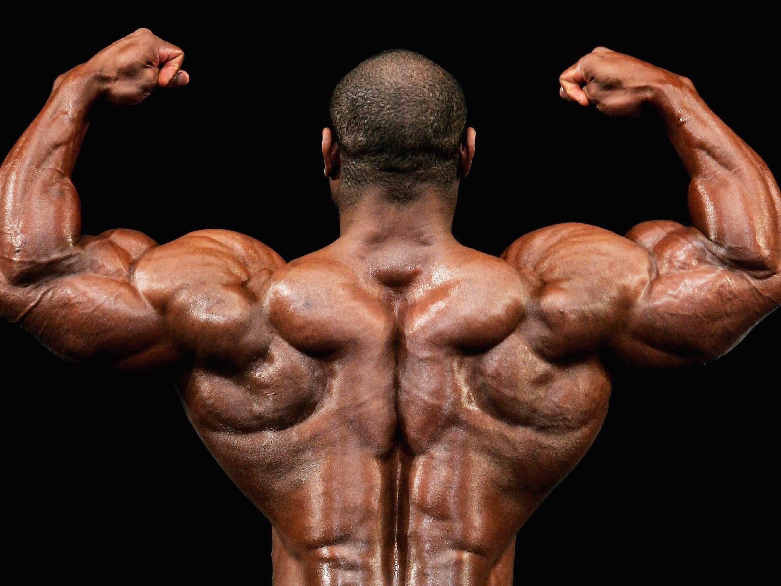 a large protein diet for body builders