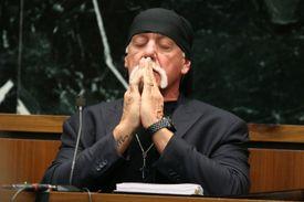 Hulk Hoganin court