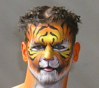 Face Painting Designs -- Tiger