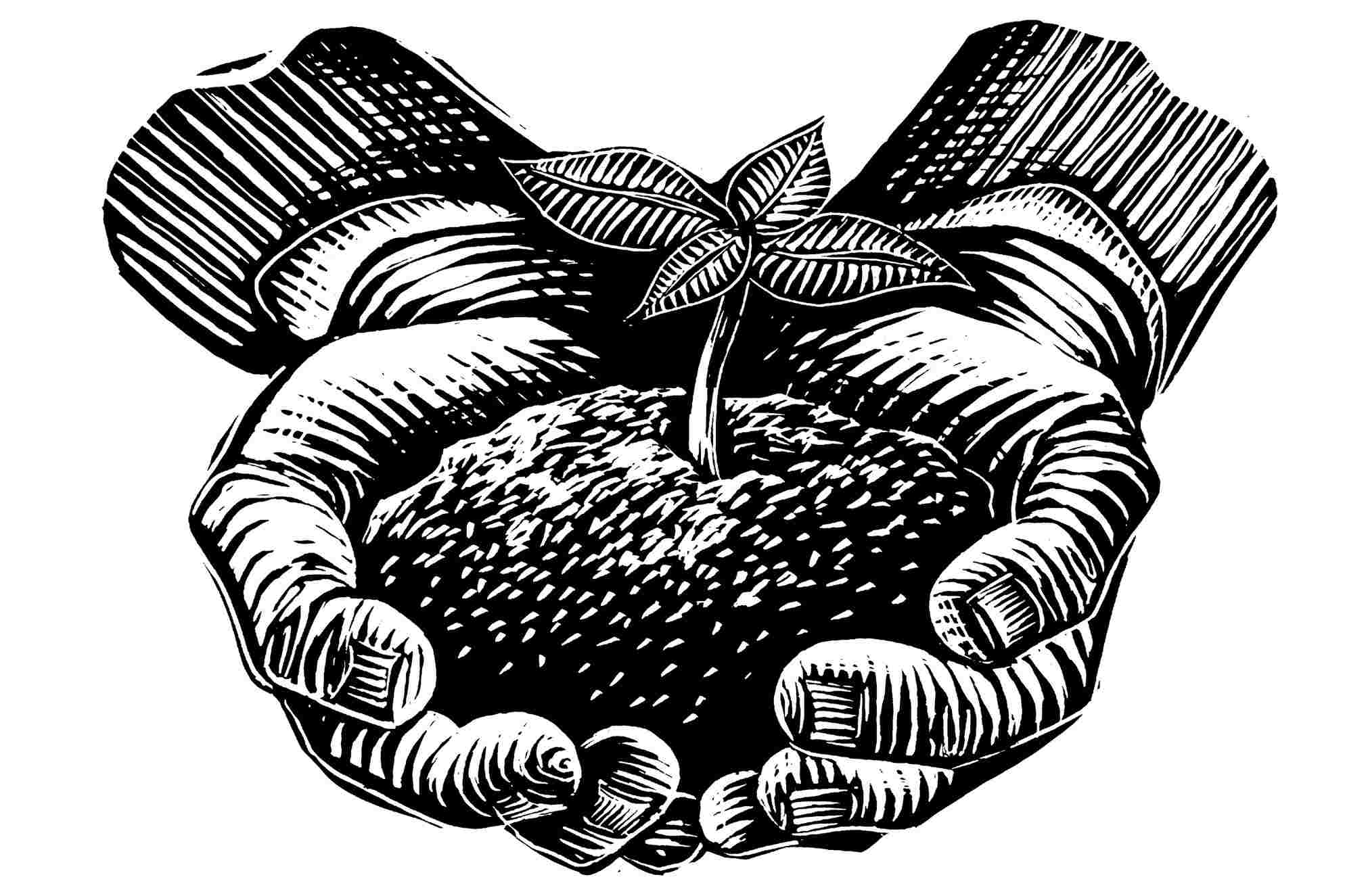 Illustration of a two hands holding a clump of dirt with a plant sprouting from it.