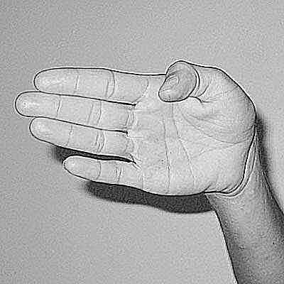 20 Common Scuba Diving Hand Signals