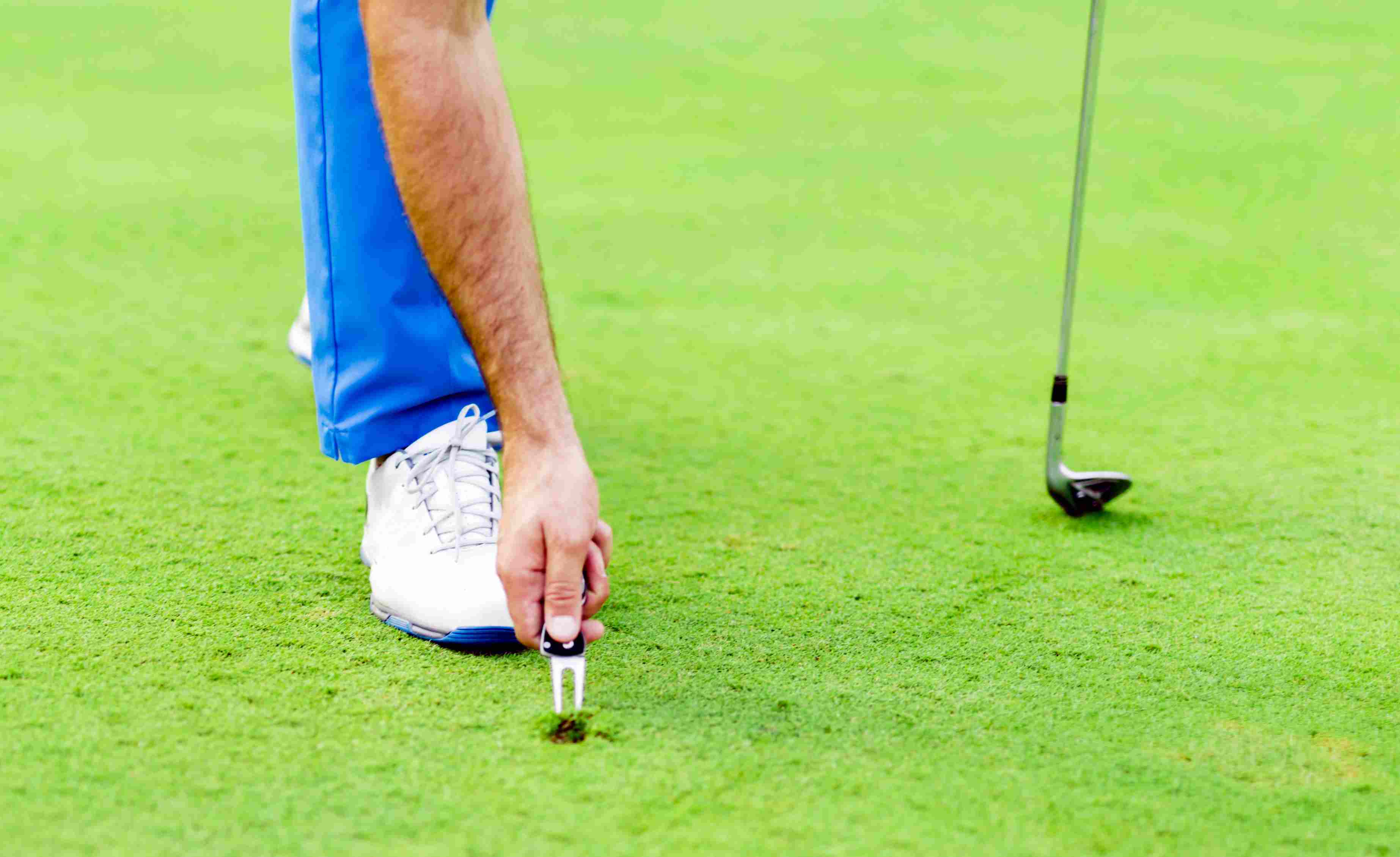 Golfer uses a divot repair tool on the putting green.