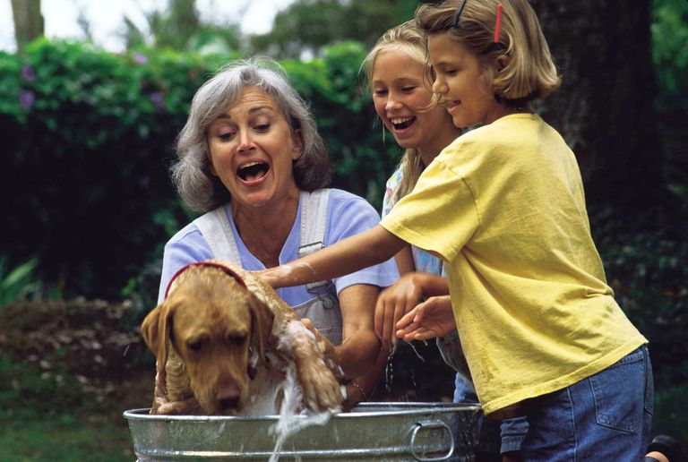 Family fun washing the dog