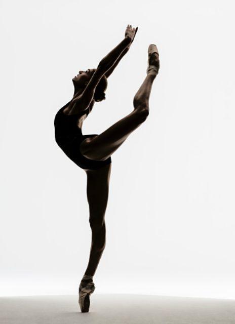 Stretching for Flexibilty