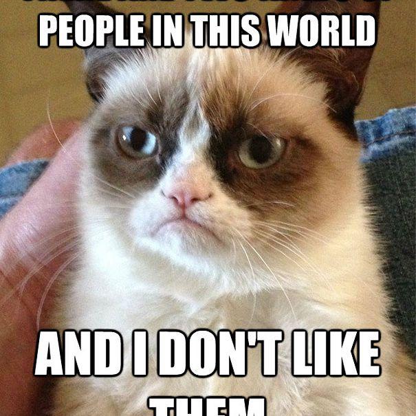 Grumpy Cat Doesn't Like People