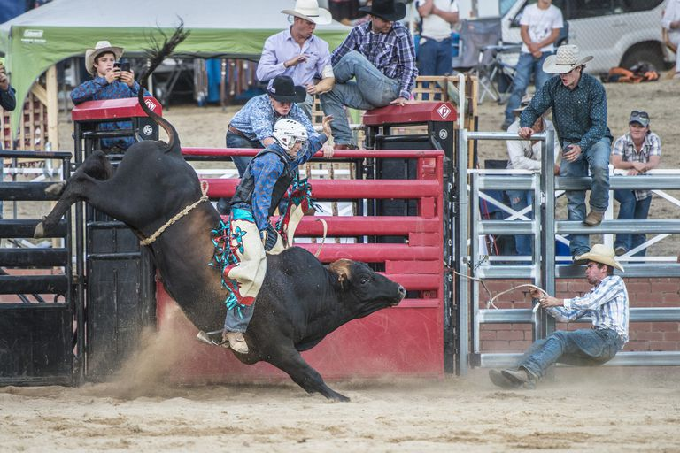 A junior bull rider hangs on tight right out of the chute.