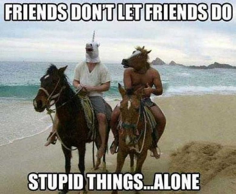 Two men riding horses, one wearing a horse mask and the other wearing a unicorn mask with text: Friends don't let friends do stupid things... alone