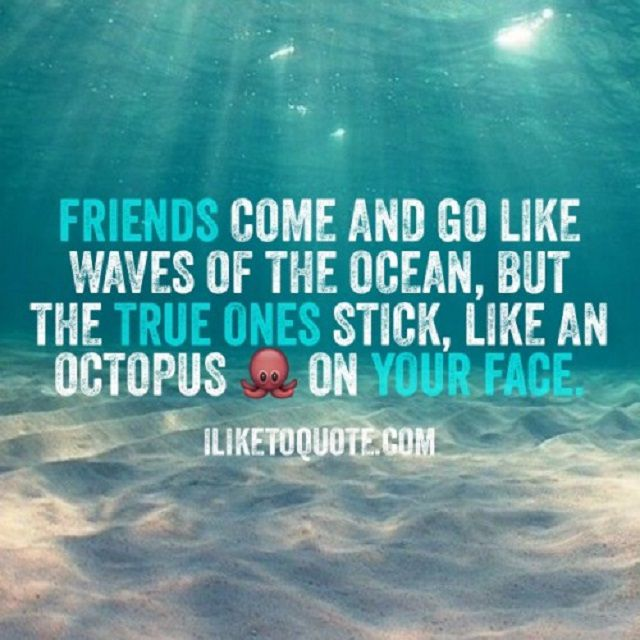Ocean background with text: Friends come and go like waves of the ocean, but the true ones stick, like an octopus on your face.
