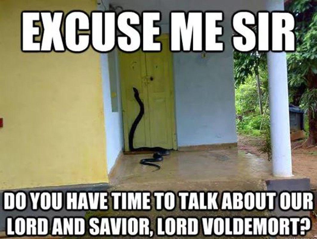 Harry potter lord voldemort meme
