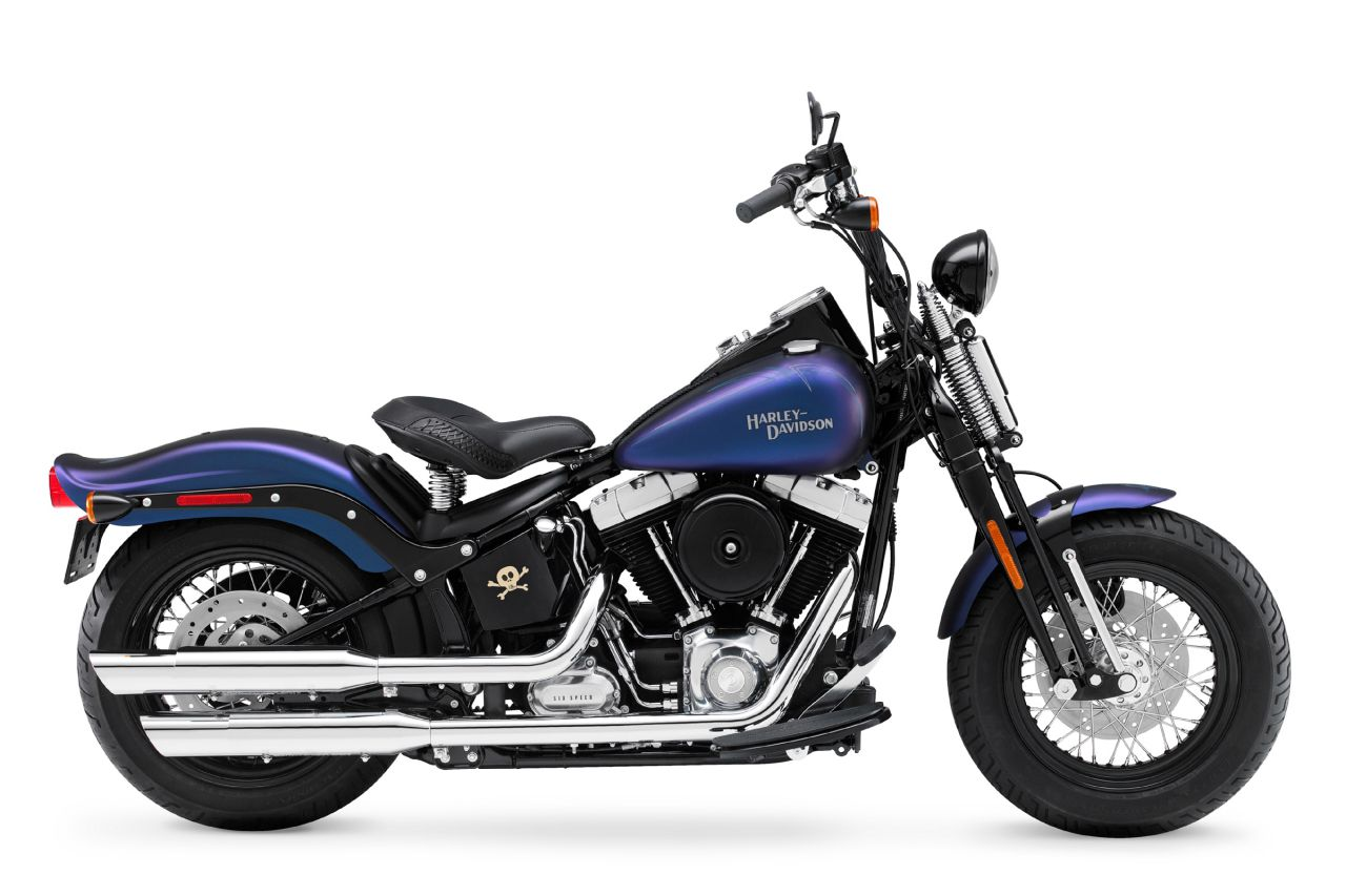 2010 Harley-Davidson Cross Bones