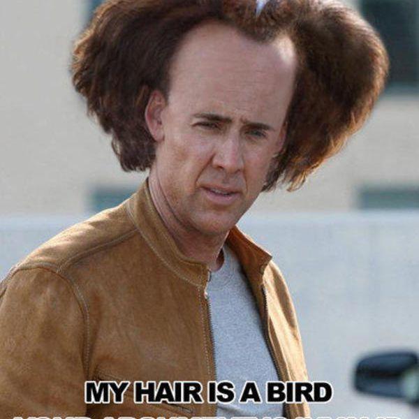 Nicolas Cage Argument Is Invalid Meme