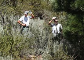 A golfer and his caddie can't find the ball.
