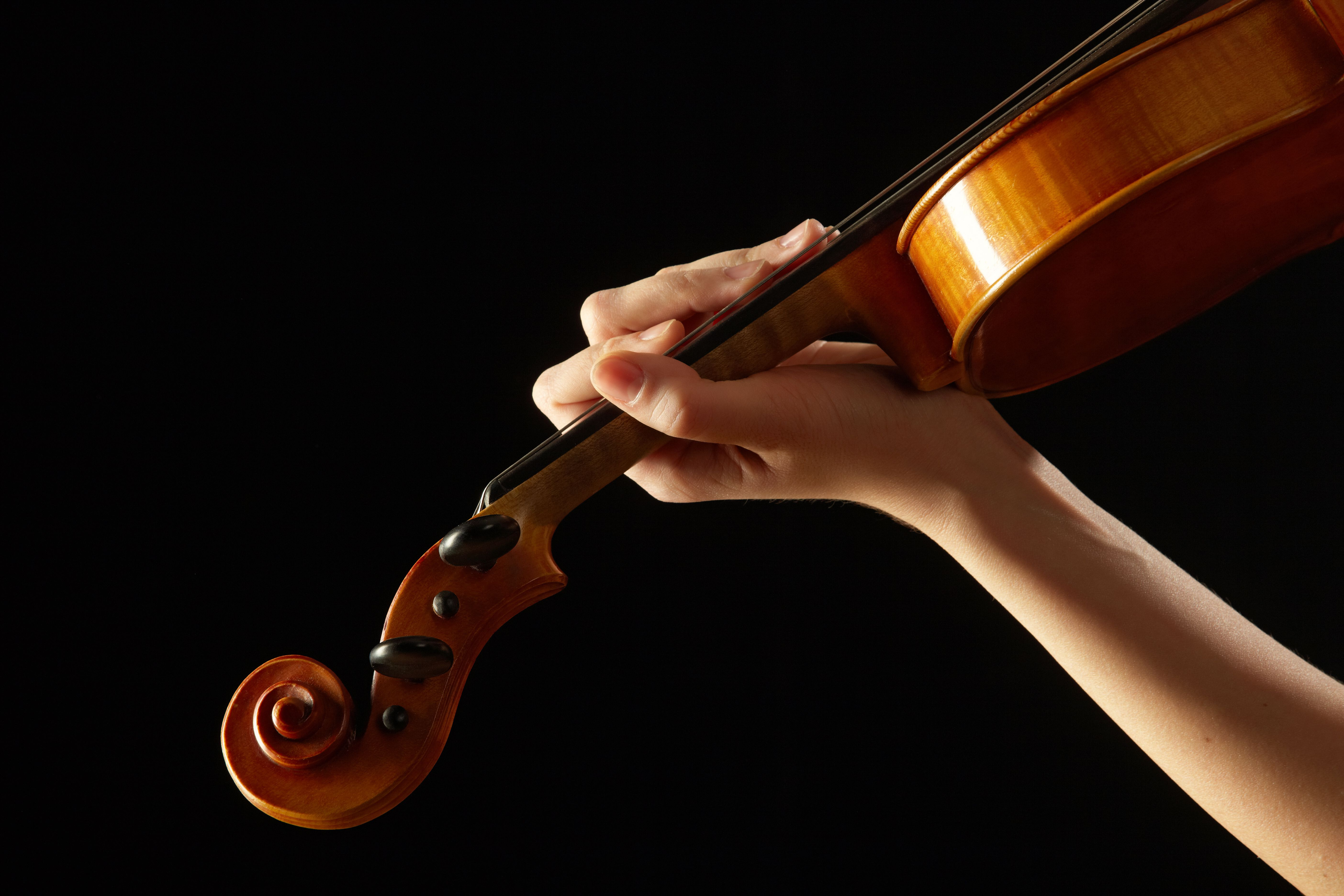 Female hand on the fingerboard violin