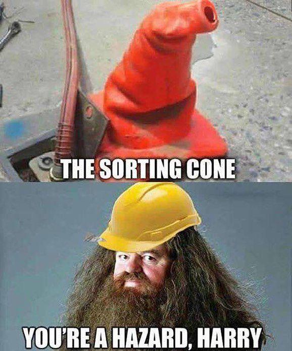 Sorting hat meme