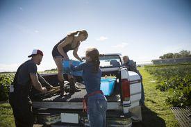 People loading a pickup truck