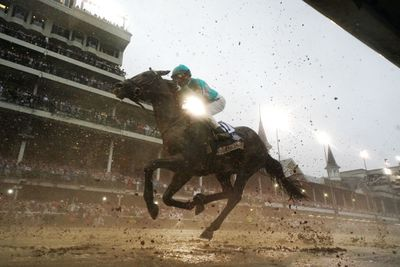 How To Find Past Results For Thoroughbred Racing