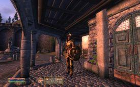 Sentry standing outside a door in The Elder Scrolls: Oblivion