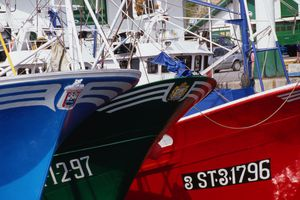 Fishing boats in Hondarribia harbour