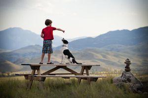 Boy on picnic table training his dog