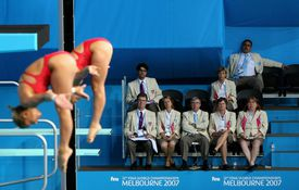 Judges at the 2007 World Diving Championships