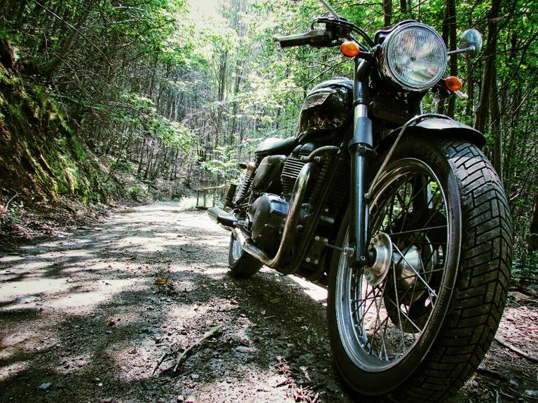 Motorcycle Parked On Dirt Road In Forest