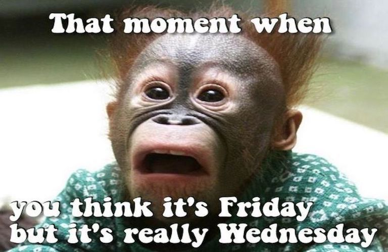 That moment when you think it's Friday but it's only Weds - meme