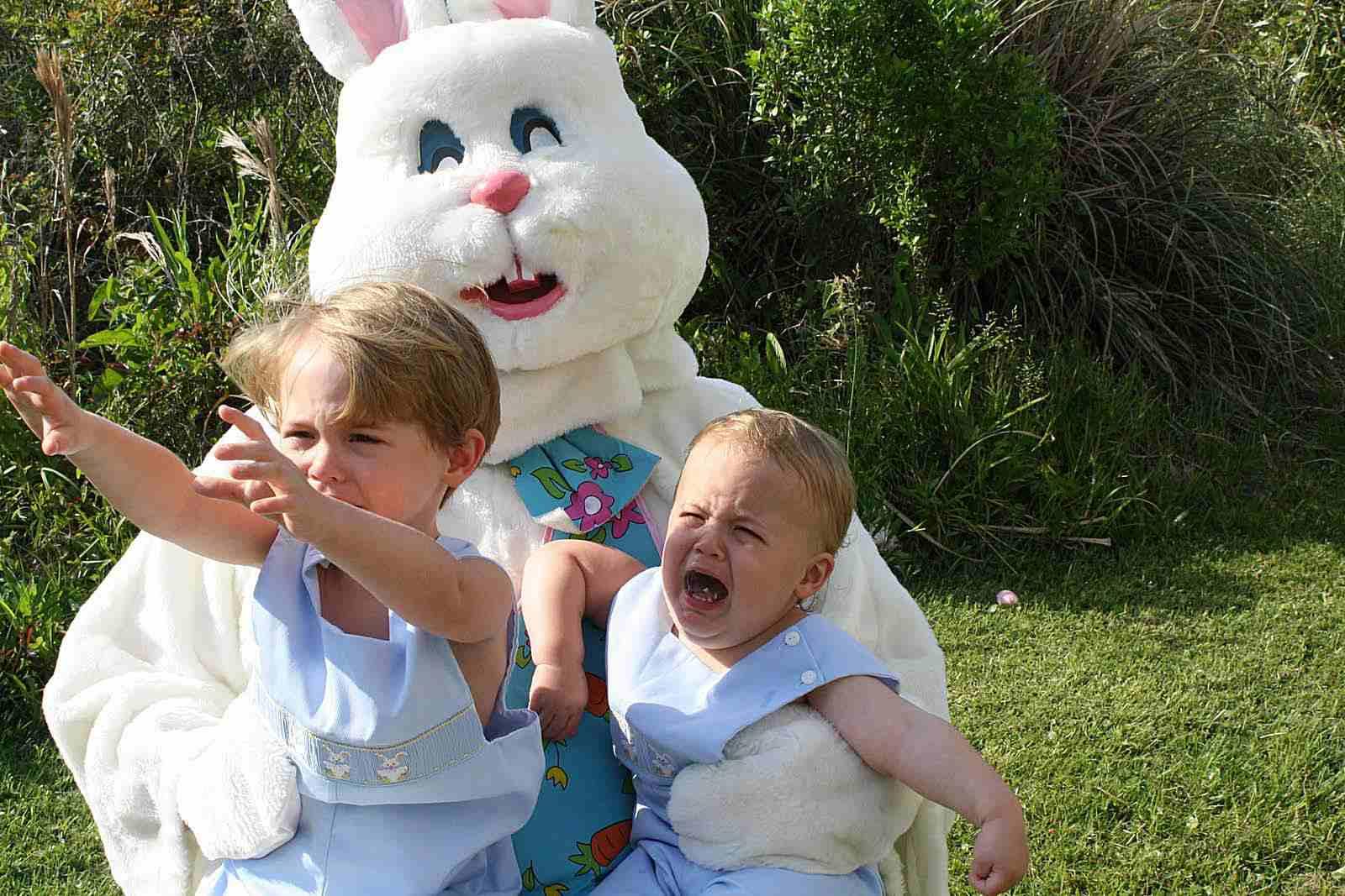 scary-bunny2.jpg