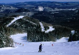 Elevated view of forested mountains with ski slopes and a few skiiers