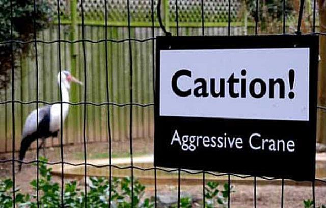 Aggressive Crane sign