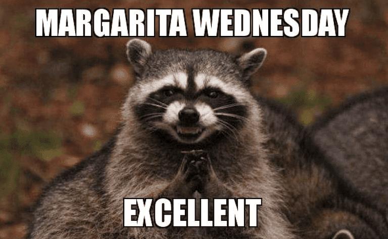 Margarita weds. Excellent - meme
