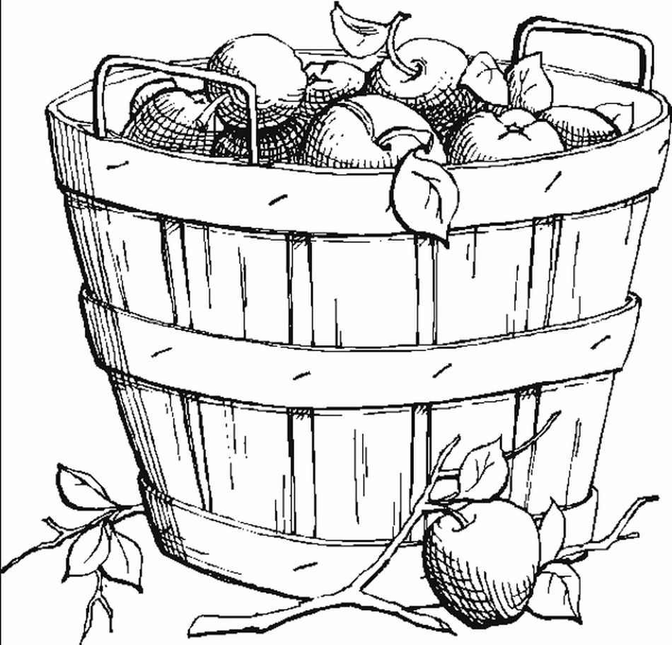 Coloring Book Funs Fall Pages A Basket Of Apples