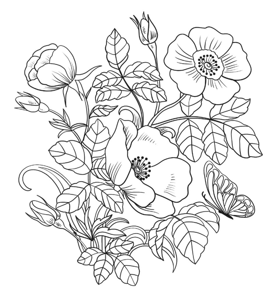 Super Colorings Free Spring Coloring Pages A Group Of Flowers
